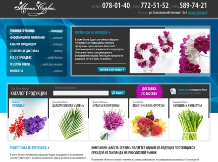 Online Shop Design for Retail Flower Distributor Avesta-Service